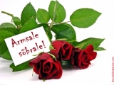 Valentinipäev, Sõbrapäev